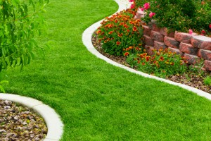 Landscaping & Lawn Care in Hampton, Tennessee