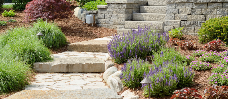 Key Ingredients of Professional Landscaping
