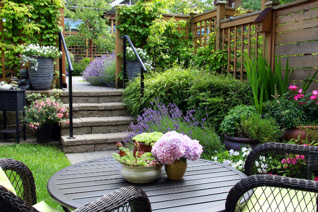 Create Your Dream Yard with These Landscape Design Ideas
