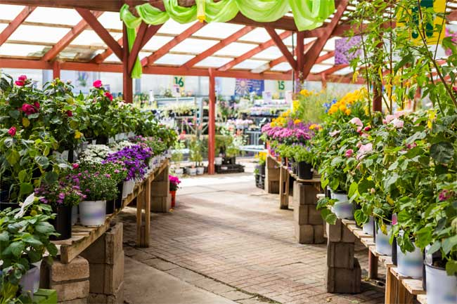 Make Your Yard Bloom by Visiting Our Garden Center