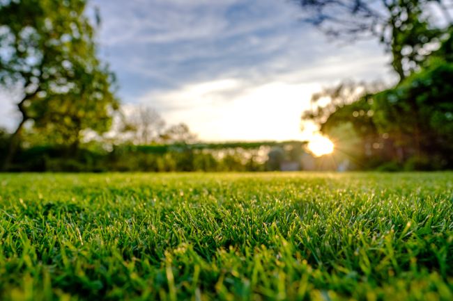 3 Tips to Make Lawn Care Simpler