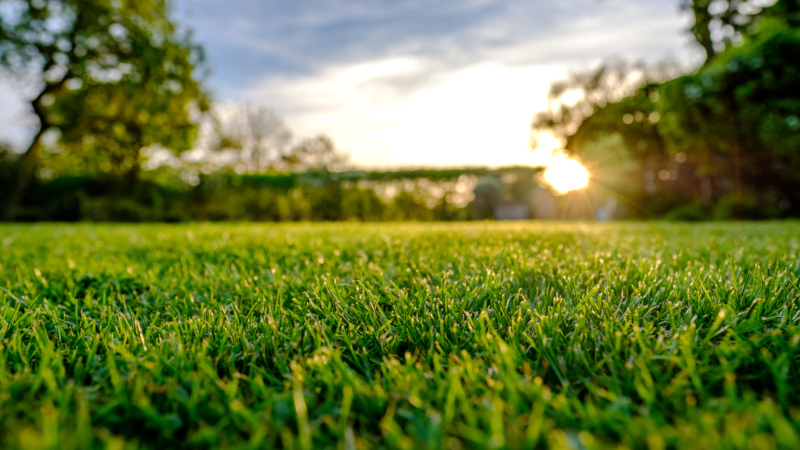 make lawn care a more simple, enjoyable task with great results