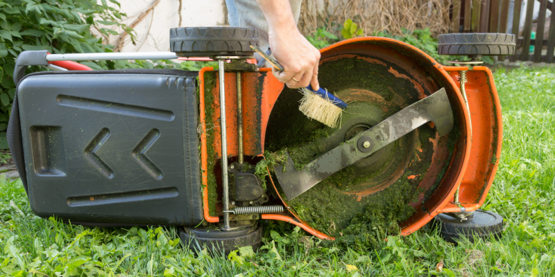 lawn care tips that anyone can use