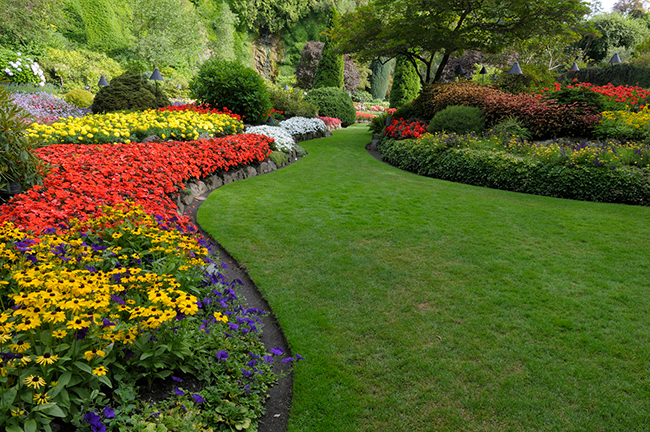 Top 4 Tips for Landscape Design